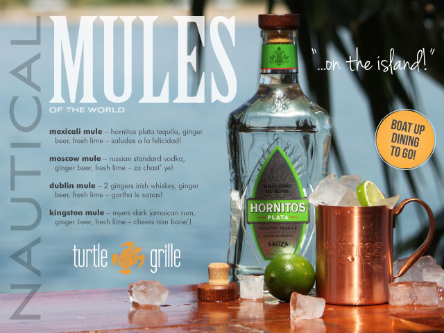 mules popup